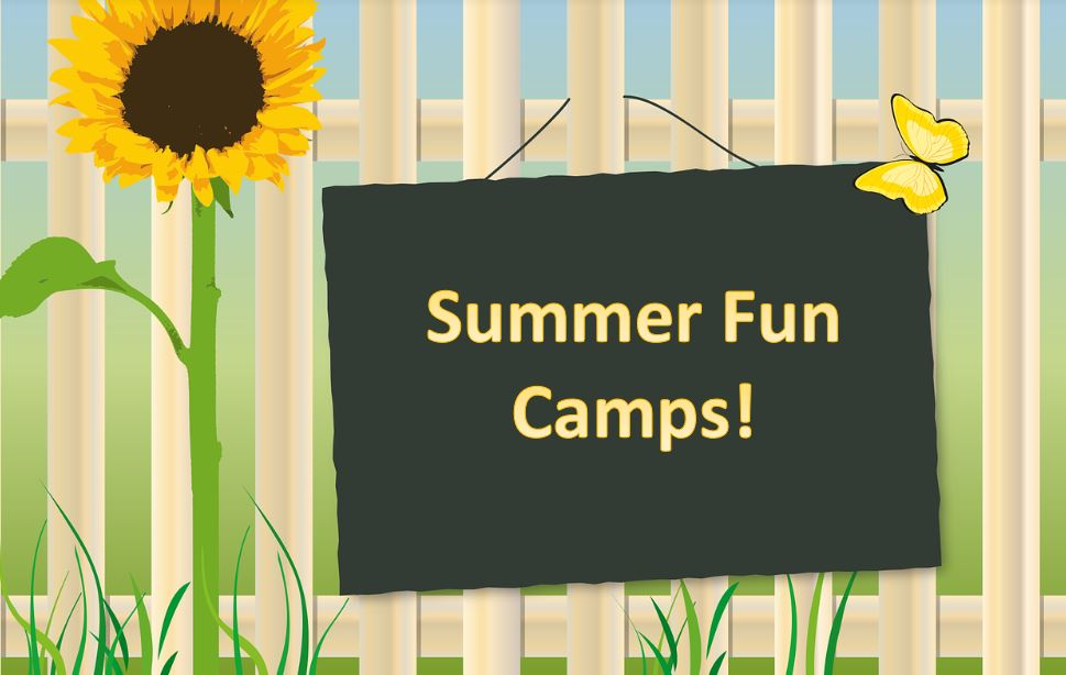 Fun Summer Camps